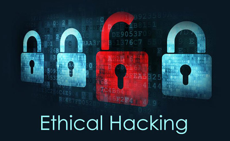 what does an ethical hacker do